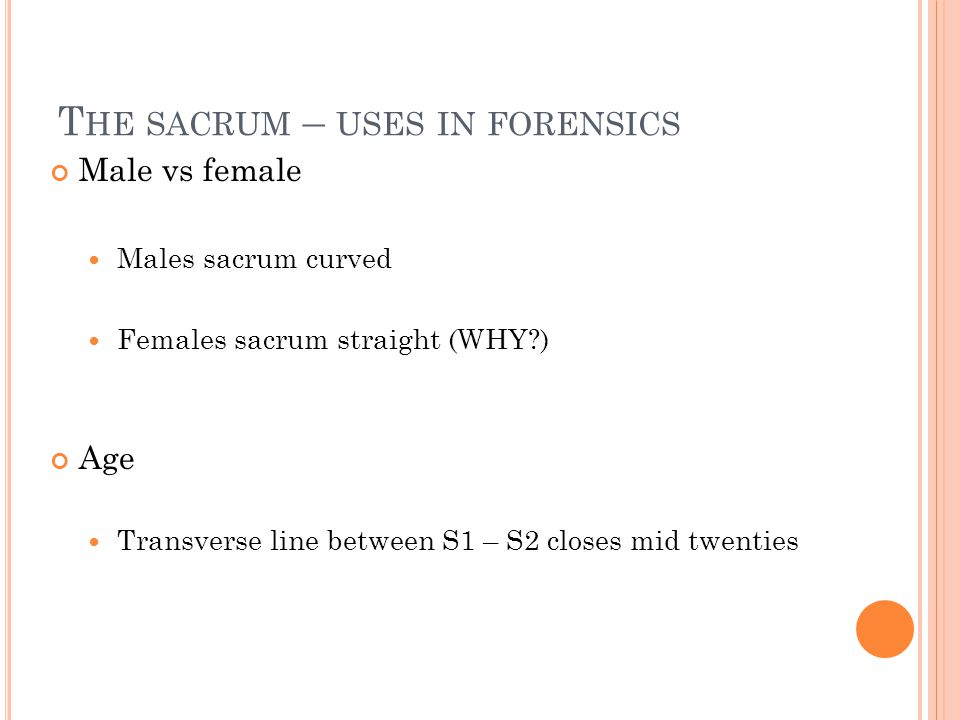 The sacrum – uses in forensics