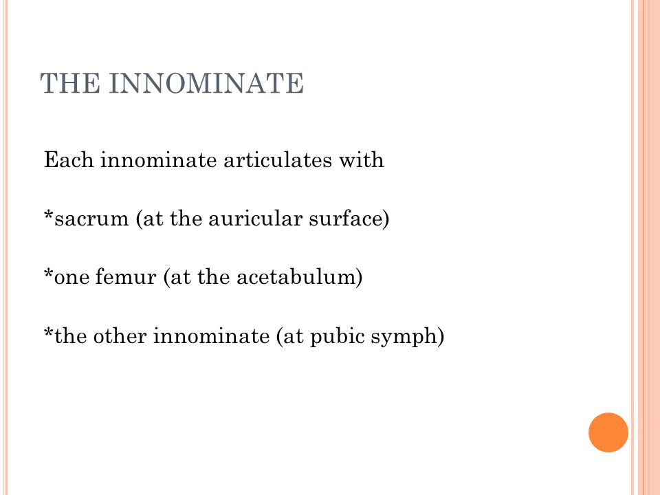 THE INNOMINATE