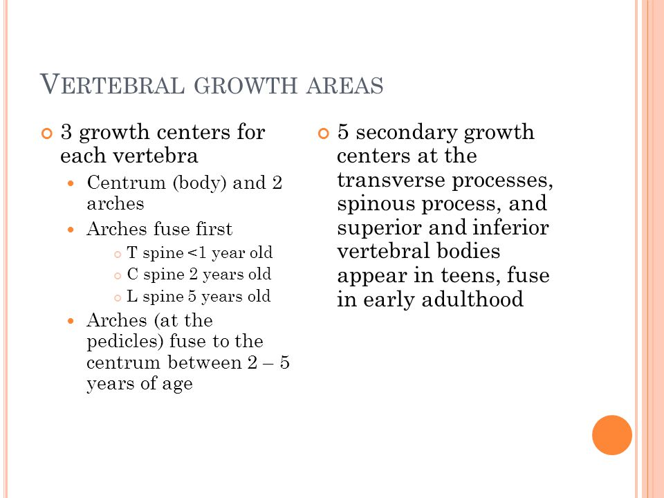 Vertebral growth areas