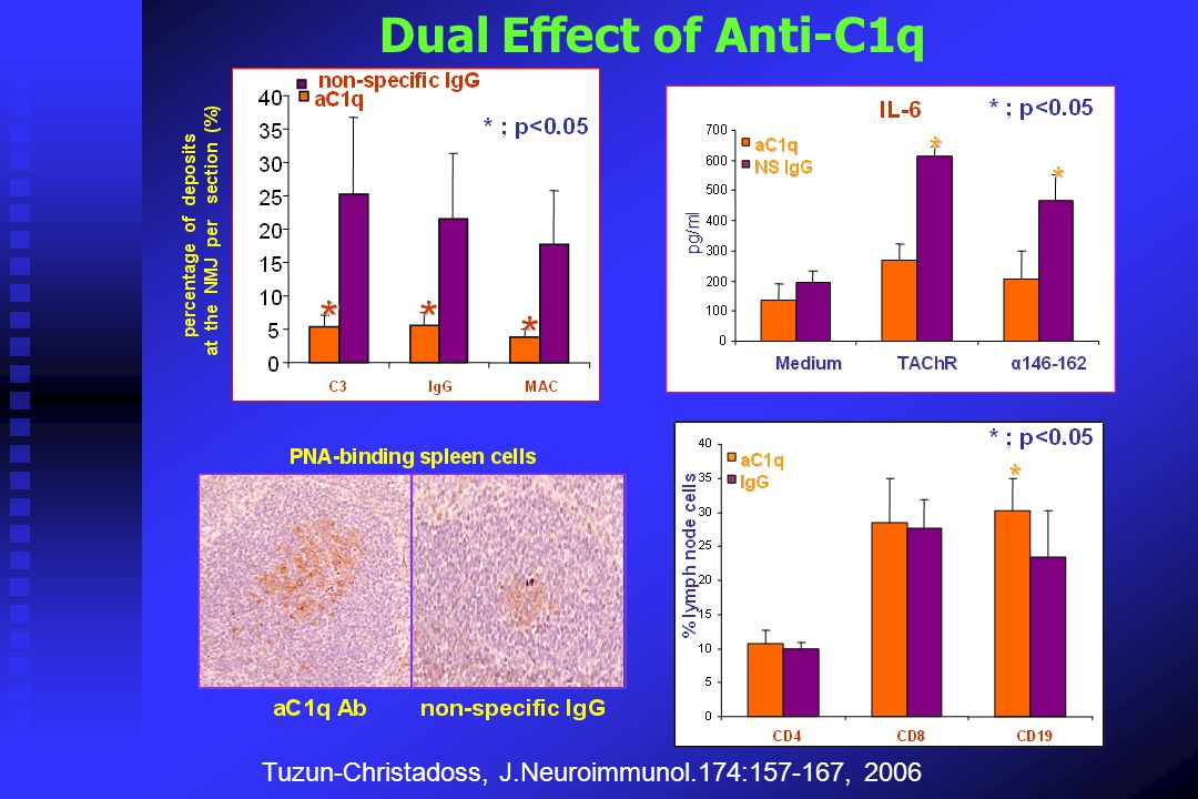 Dual Effect of Anti-C1q Tuzun-Christadoss, J.Neuroimmunol.174:157-167, 2006