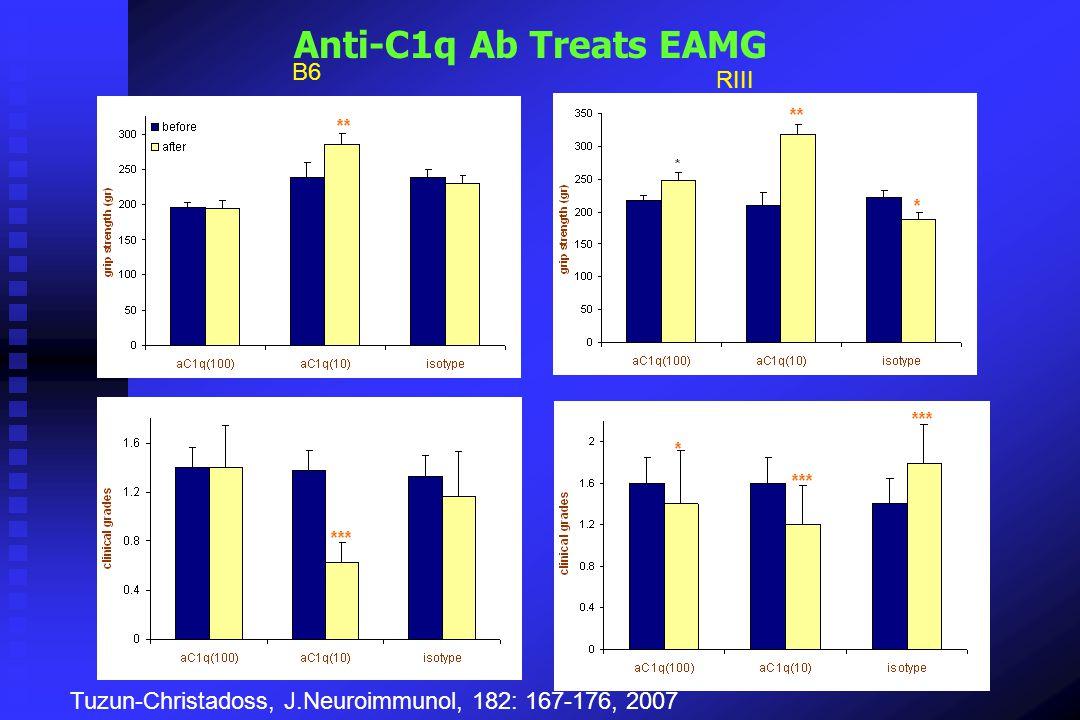 Anti-C1q Ab Treats EAMG B6 RIII