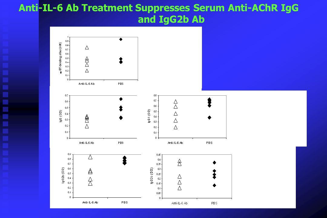 Anti-IL-6 Ab Treatment Suppresses Serum Anti-AChR IgG