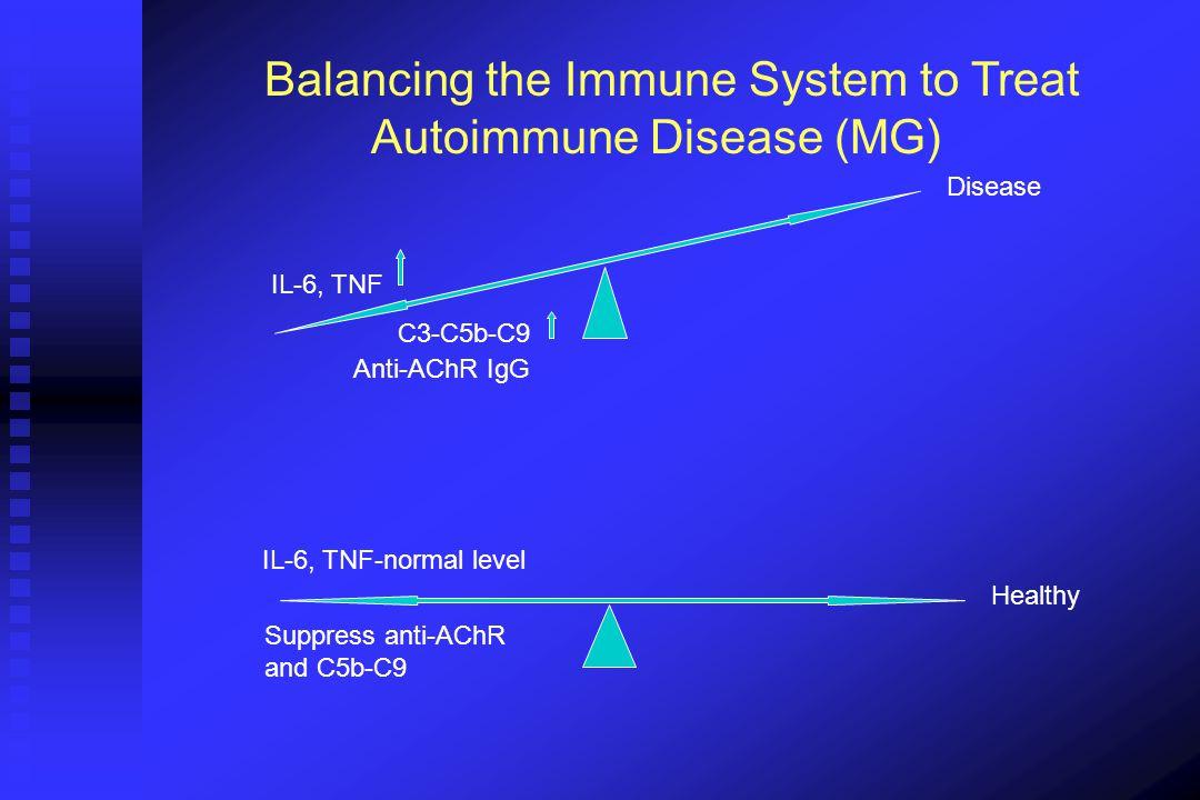Balancing the Immune System to Treat Autoimmune Disease (MG)