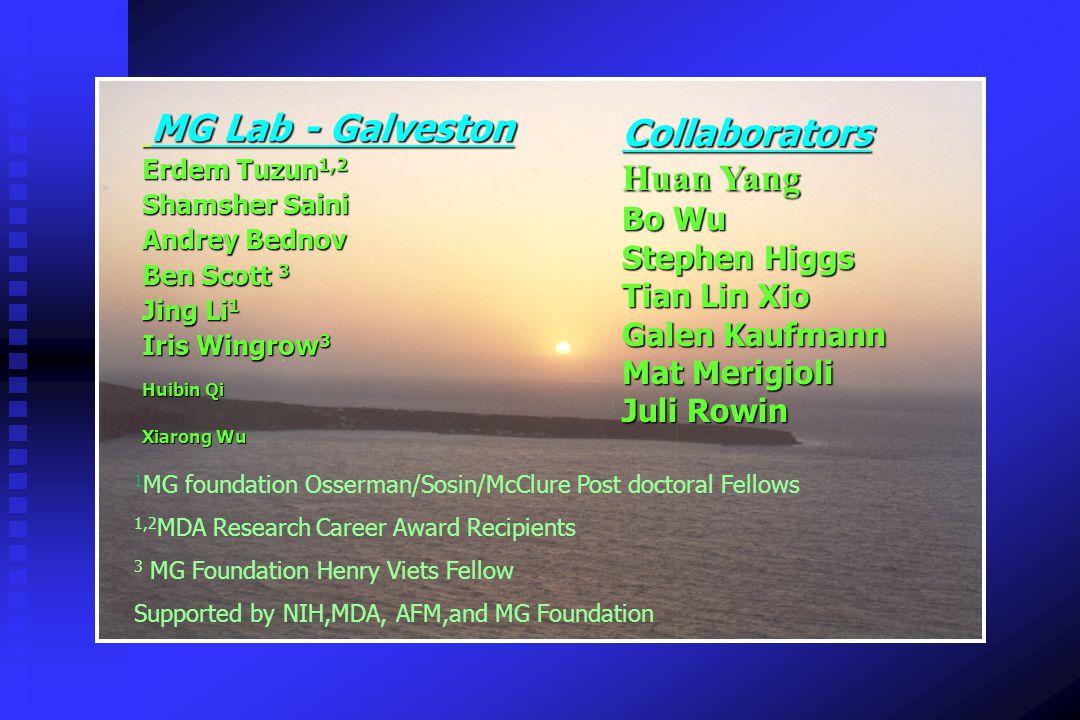 MG Lab - Galveston Collaborators Huan Yang Bo Wu Stephen Higgs