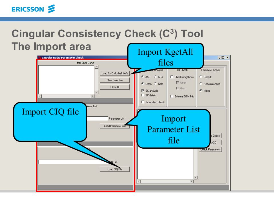 Cingular Consistency Check (C3) Tool The Import area
