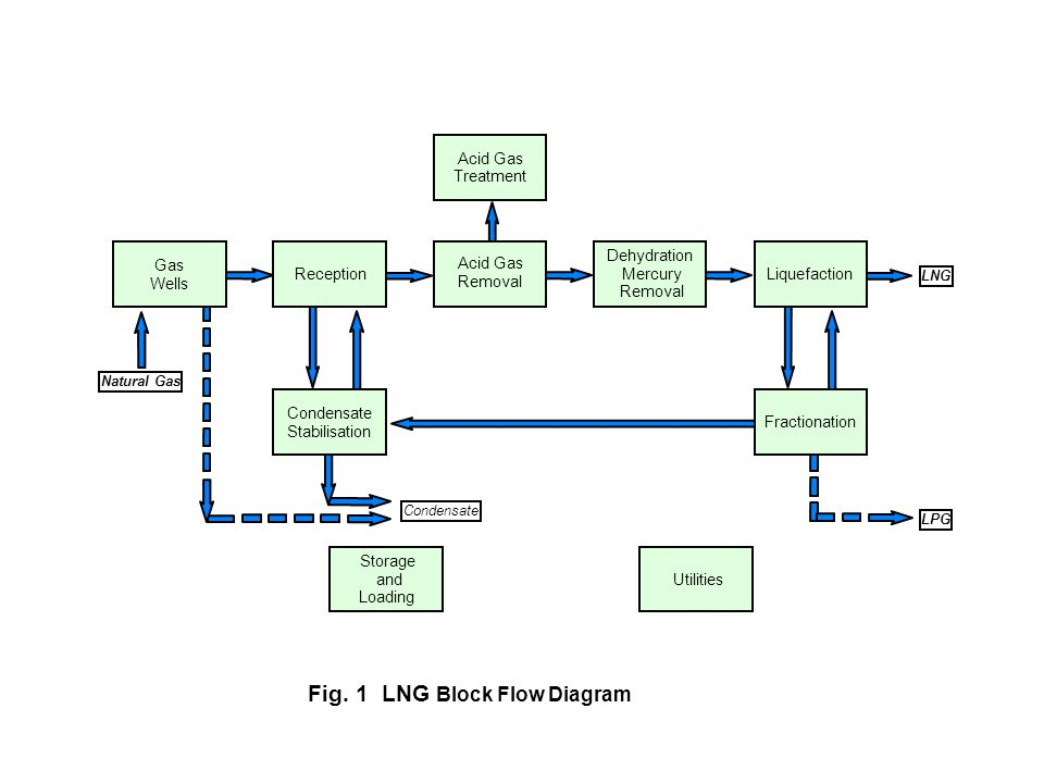 Fig 1 Lng Block Flow Diagram Ppt Video Online Download
