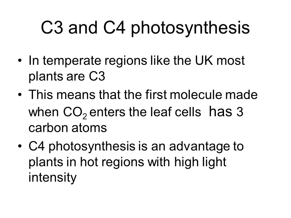 C3 and C4 photosynthesis In temperate regions like the UK most plants are C3.