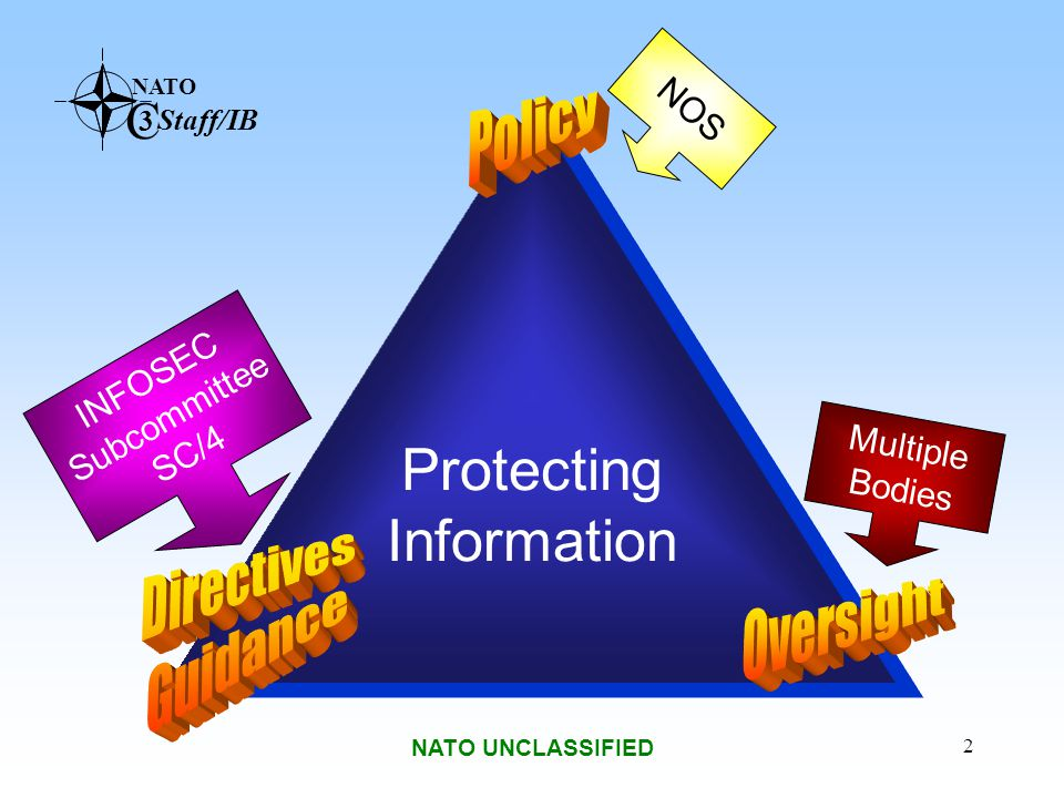 Protecting Information Policy Directives Guidance Oversight NOS
