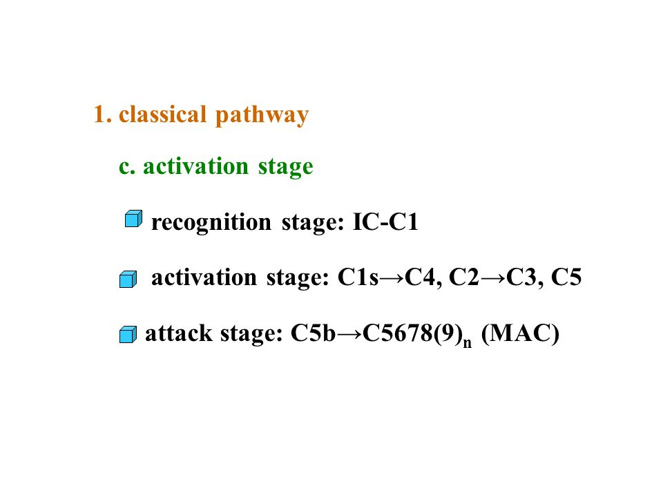 1. classical pathway c. activation stage. recognition stage: IC-C1. activation stage: C1s→C4, C2→C3, C5.