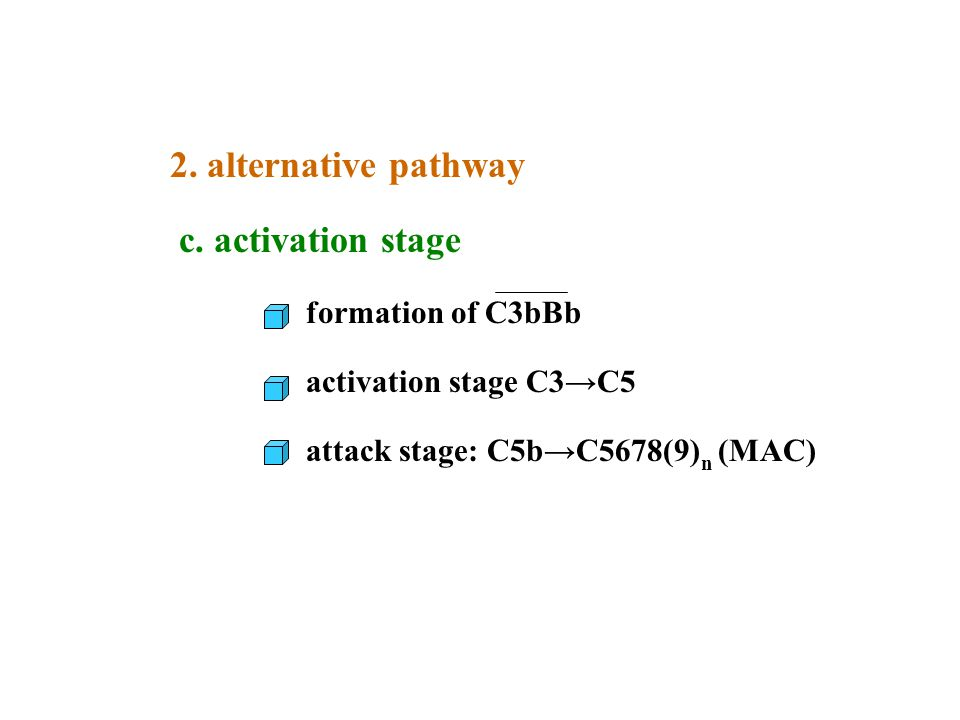 2. alternative pathway c. activation stage formation of C3bBb
