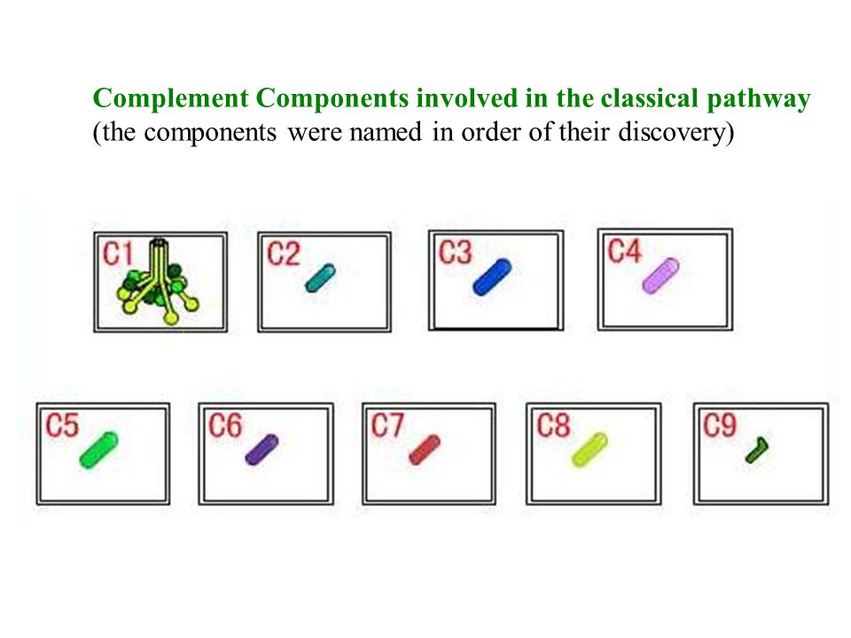 Complement Components involved in the classical pathway