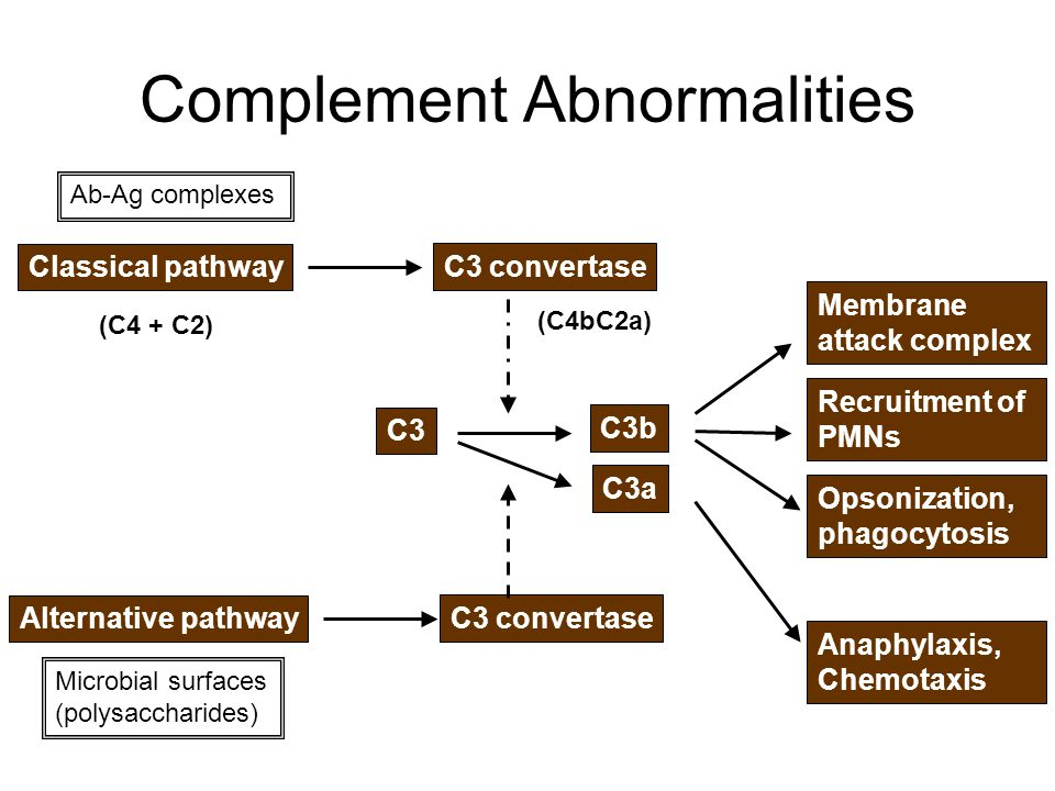 Complement Abnormalities