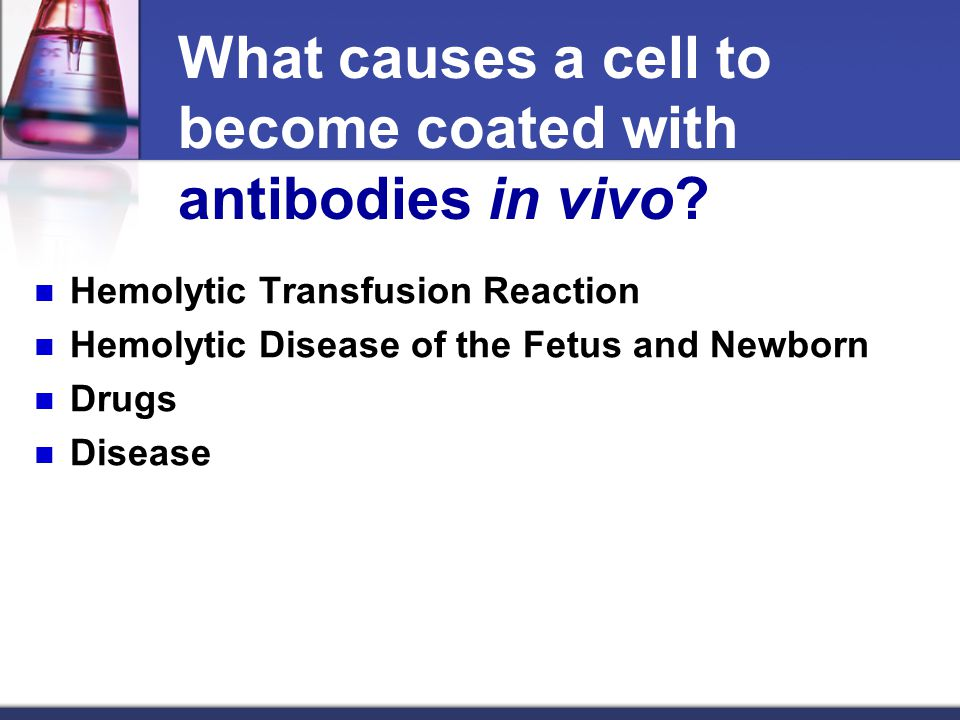 What causes a cell to become coated with antibodies in vivo
