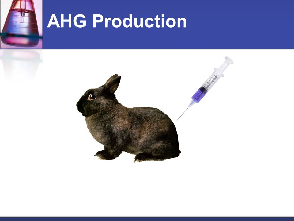 AHG Production