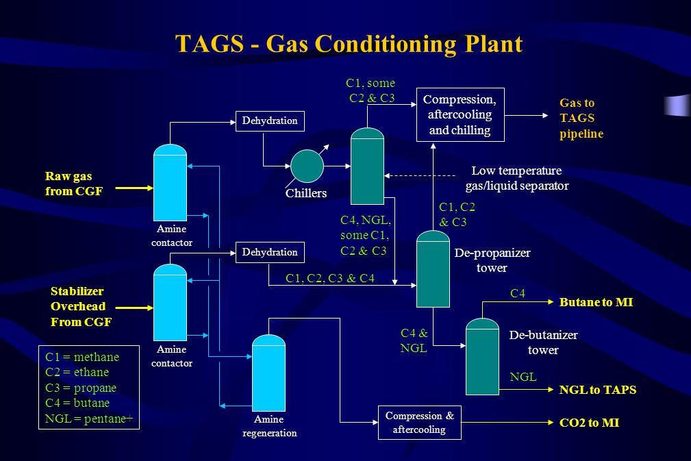 TAGS - Gas Conditioning Plant