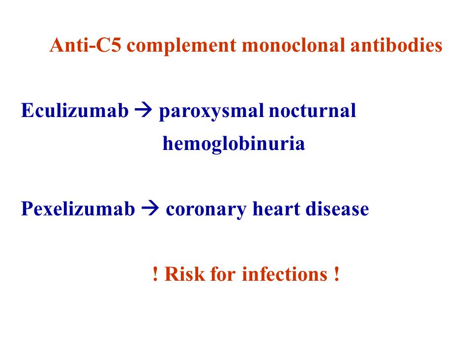 Anti-C5 complement monoclonal antibodies