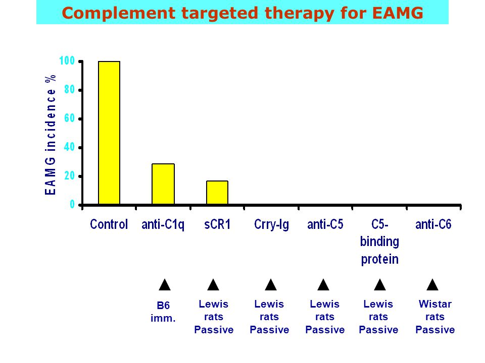 Complement targeted therapy for EAMG