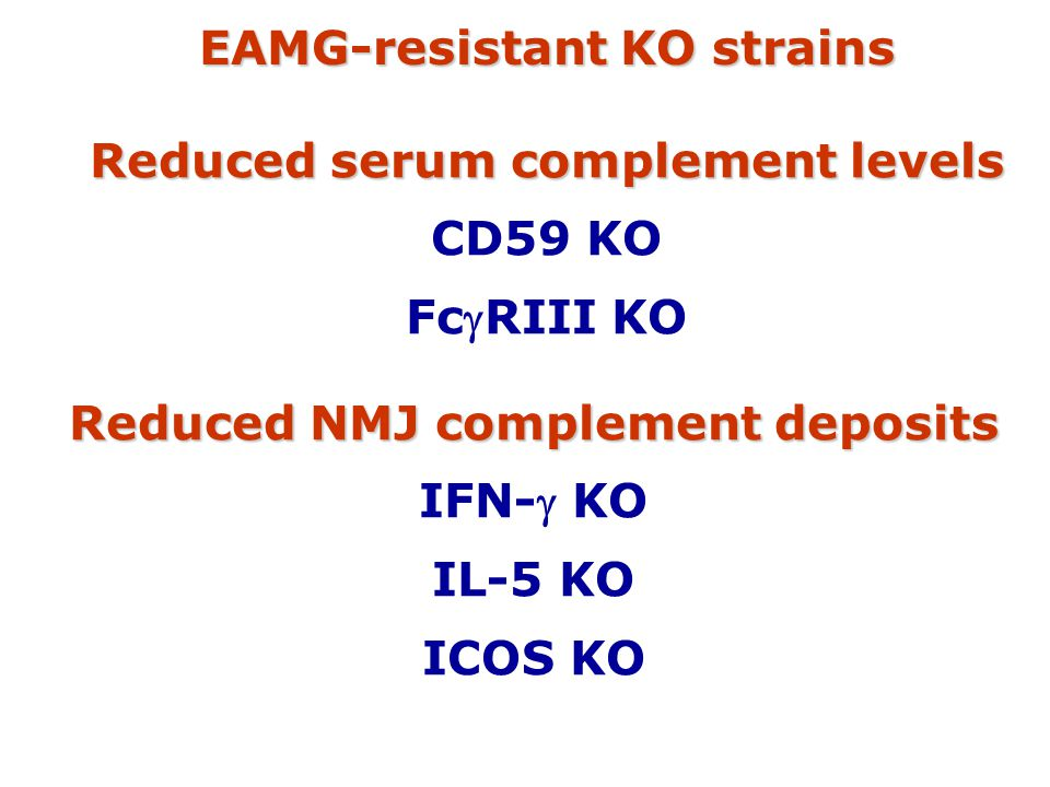 EAMG-resistant KO strains