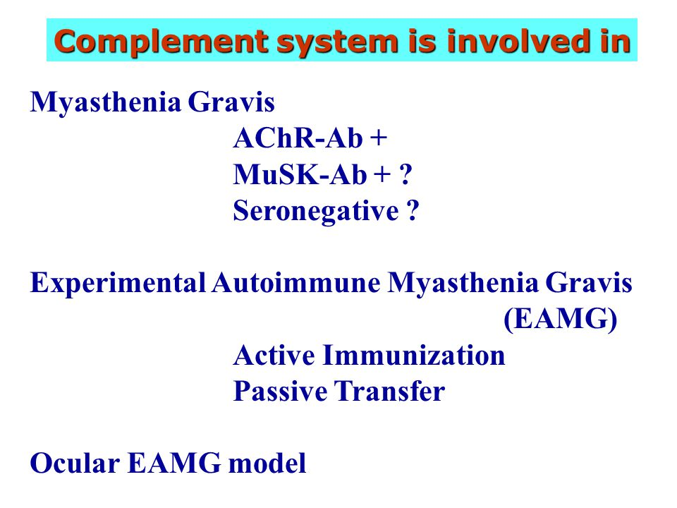 Complement system is involved in