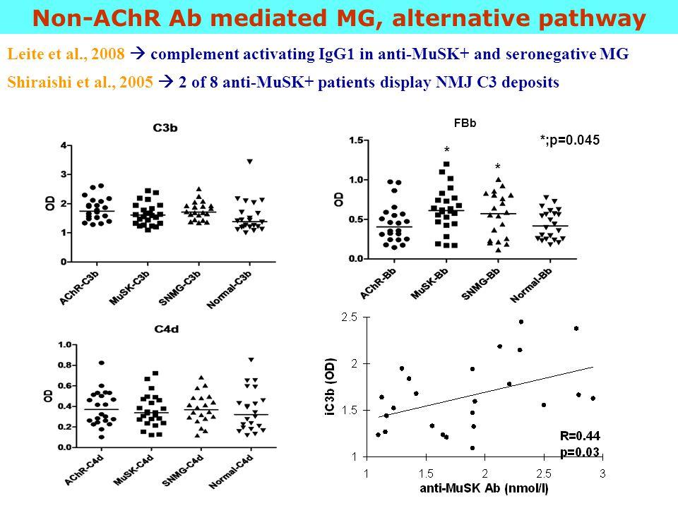 Non-AChR Ab mediated MG, alternative pathway