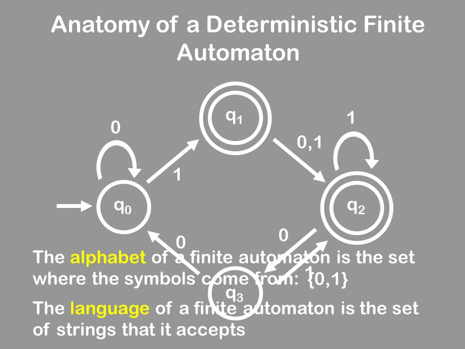 Anatomy of a Deterministic Finite Automaton