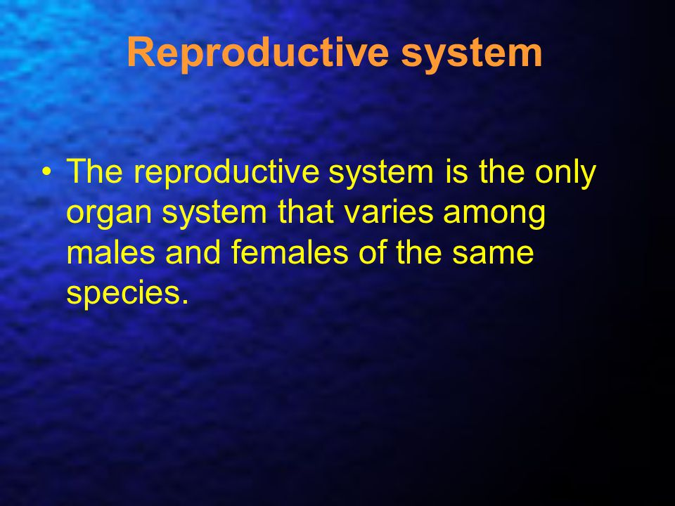 Reproductive system The reproductive system is the only organ system that varies among males and females of the same species.