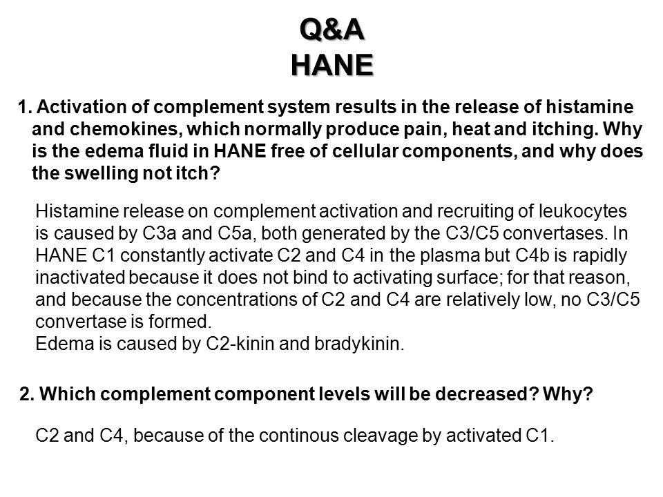 Q&A HANE.