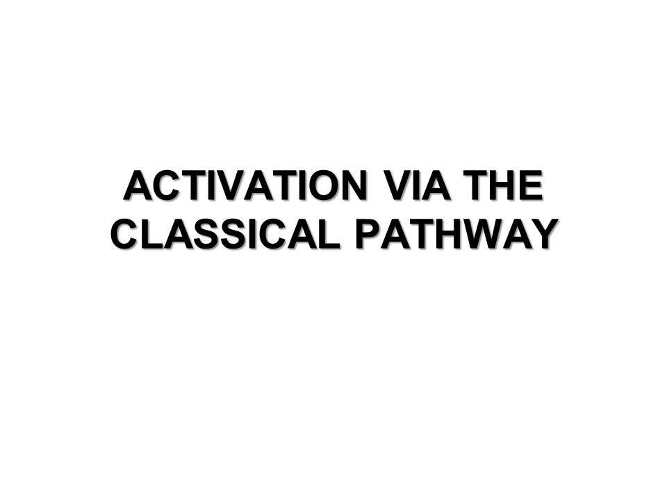 ACTIVATION VIA THE CLASSICAL PATHWAY