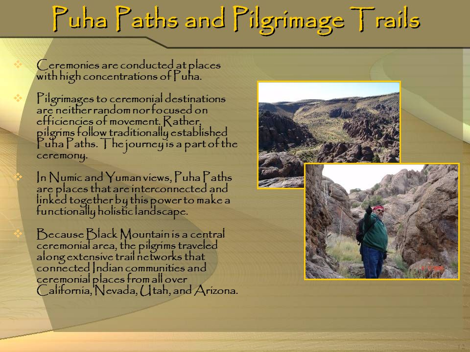Puha Paths and Pilgrimage Trails