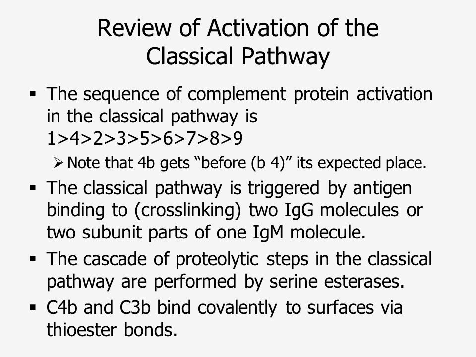 Review of Activation of the Classical Pathway