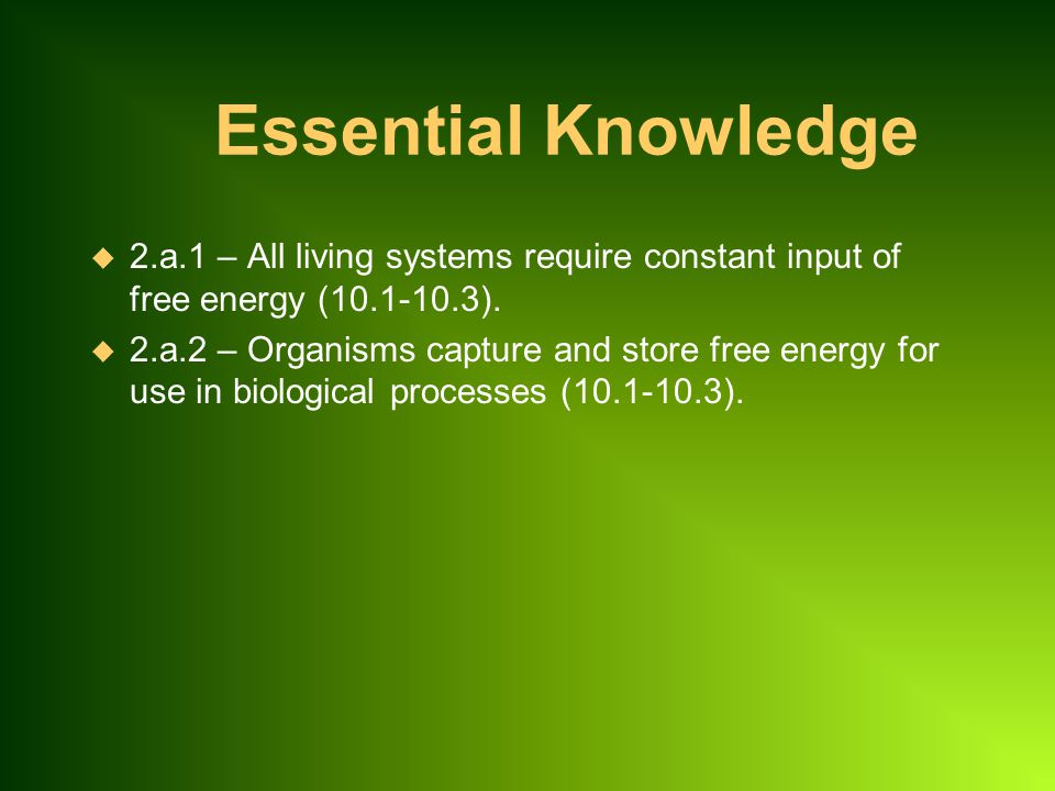 Essential Knowledge 2.a.1 – All living systems require constant input of free energy (10.1-10.3).