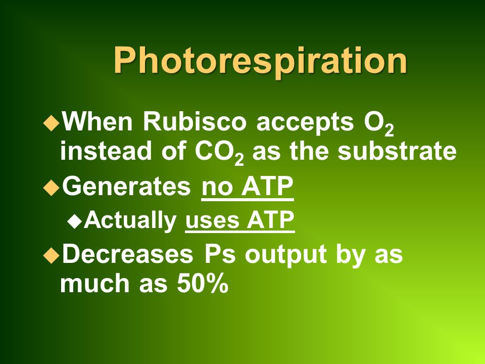 Photorespiration When Rubisco accepts O2 instead of CO2 as the substrate. Generates no ATP. Actually uses ATP.