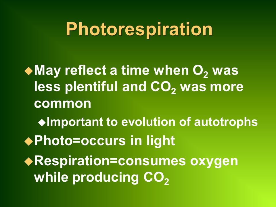 Photorespiration May reflect a time when O2 was less plentiful and CO2 was more common. Important to evolution of autotrophs.
