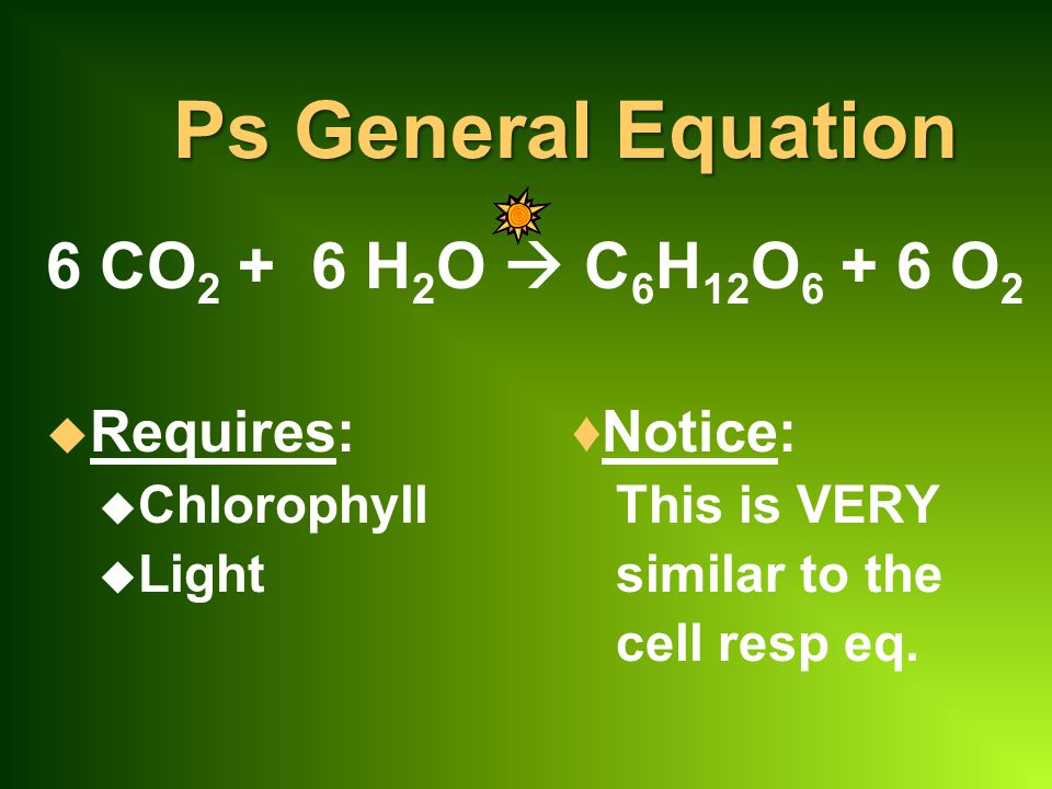 Ps General Equation 6 CO2 + 6 H2O  C6H12O6 + 6 O2 Requires: ♦Notice:
