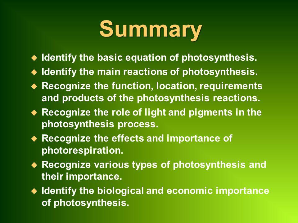 Summary Identify the basic equation of photosynthesis.