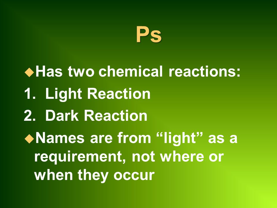 Ps Has two chemical reactions: 1. Light Reaction 2. Dark Reaction