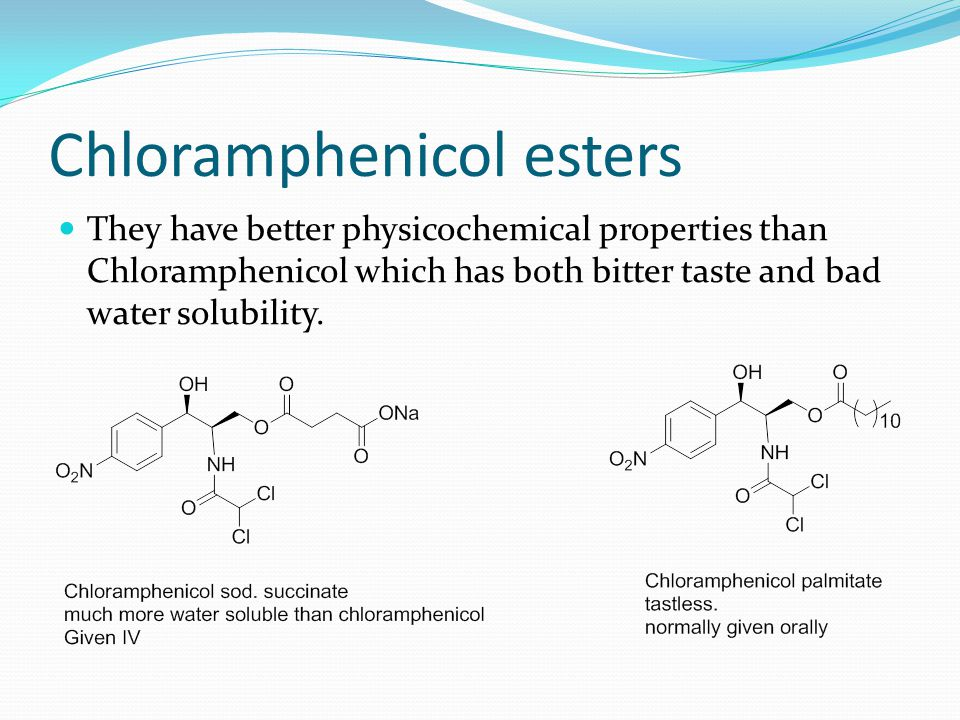 Chloramphenicol esters