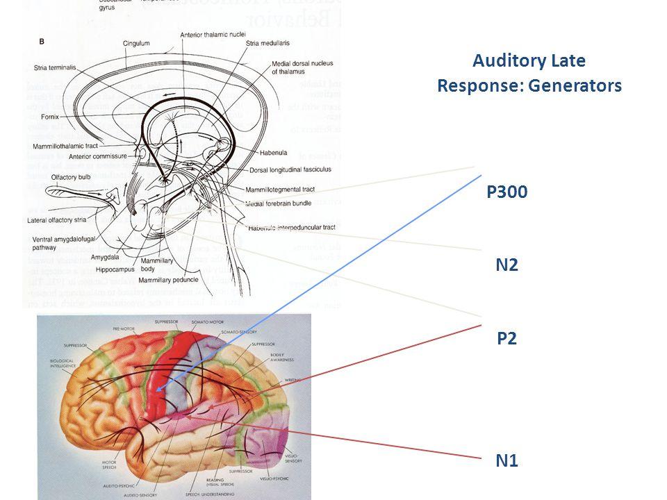 Auditory Late Response: Generators