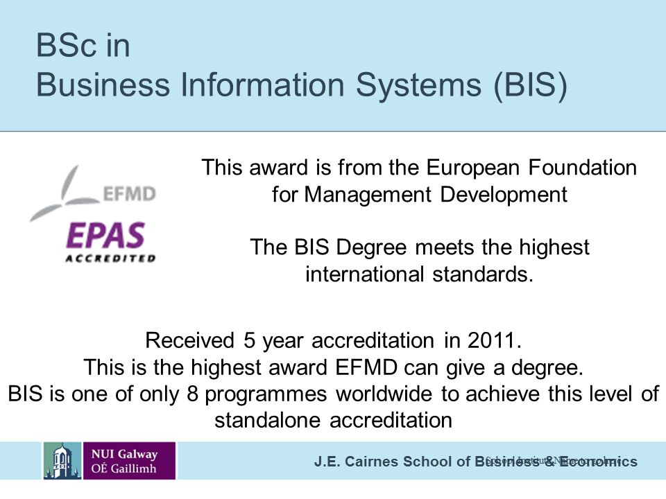 BSc in Business Information Systems (BIS)