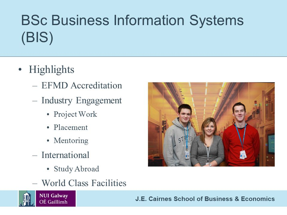 BSc Business Information Systems (BIS)