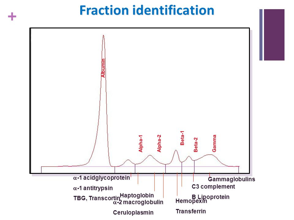 Fraction identification