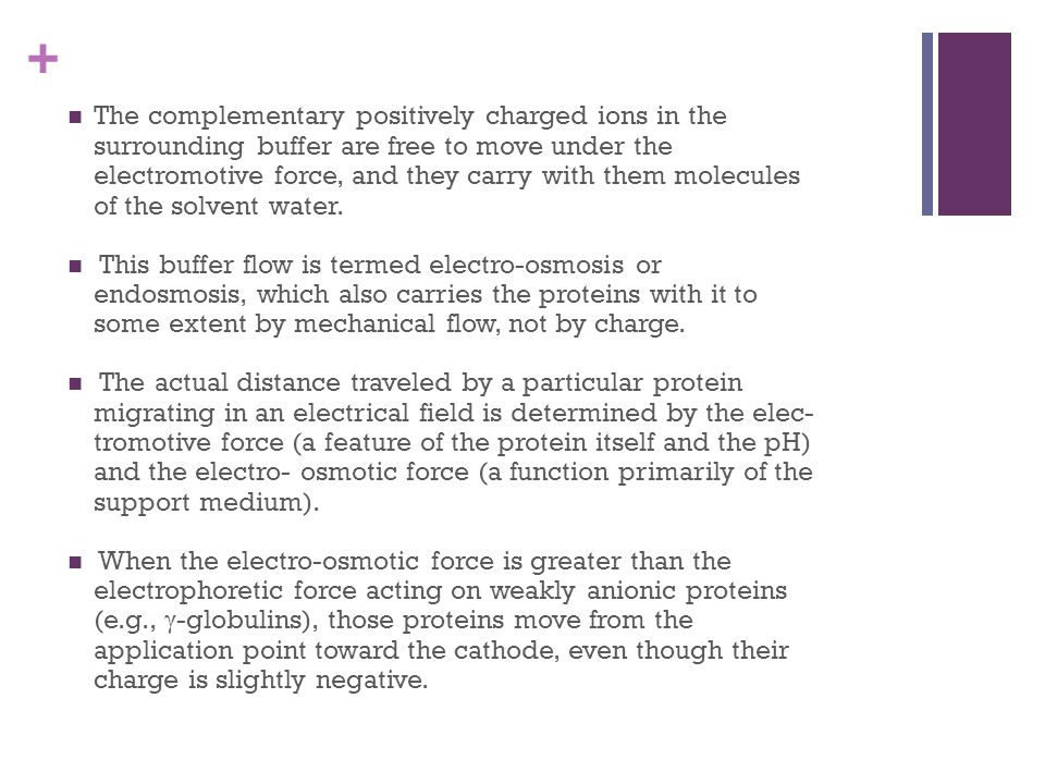 The complementary positively charged ions in the surrounding buffer are free to move under the electromotive force, and they carry with them molecules of the solvent water.