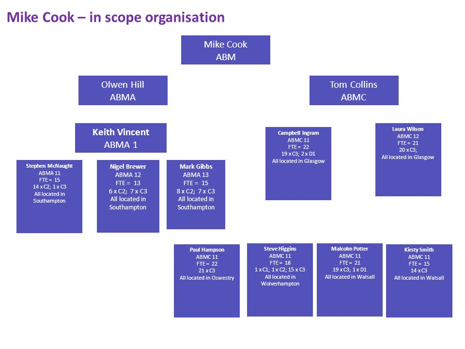 Mike Cook – in scope organisation