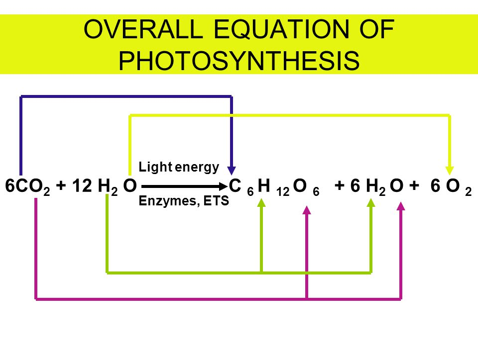 OVERALL EQUATION OF PHOTOSYNTHESIS