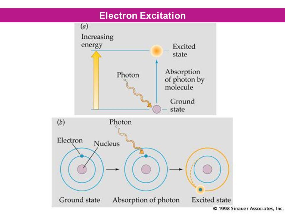 Electron Excitation