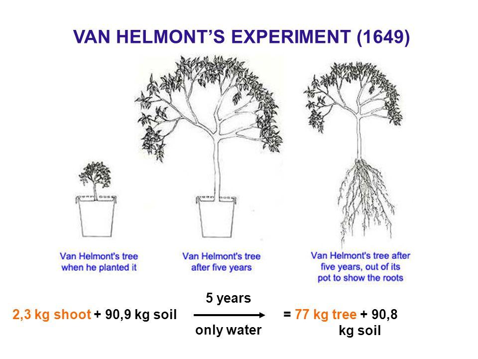 VAN HELMONT'S EXPERIMENT (1649)