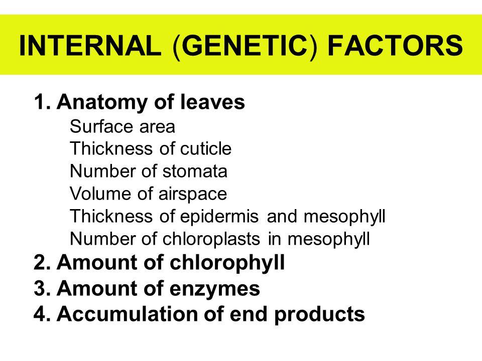INTERNAL (GENETIC) FACTORS