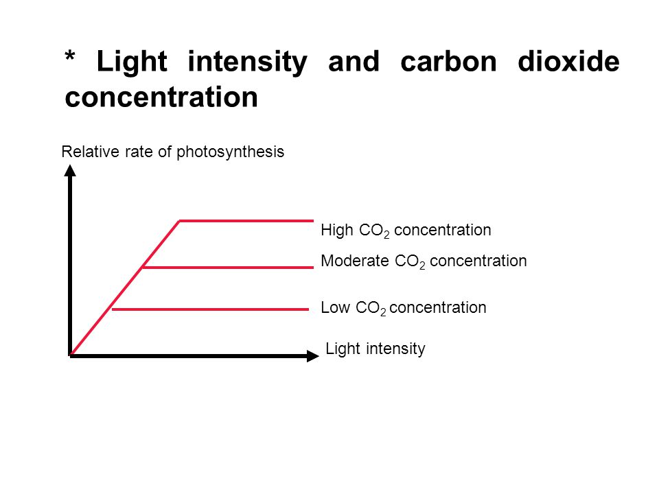 * Light intensity and carbon dioxide concentration