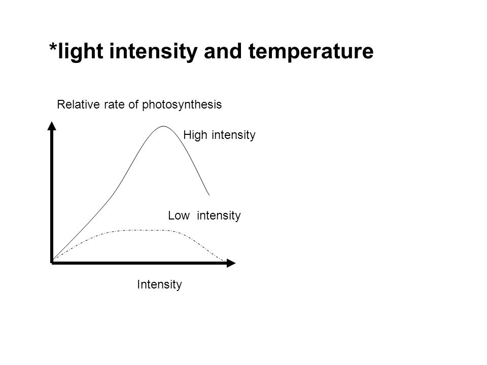 *light intensity and temperature
