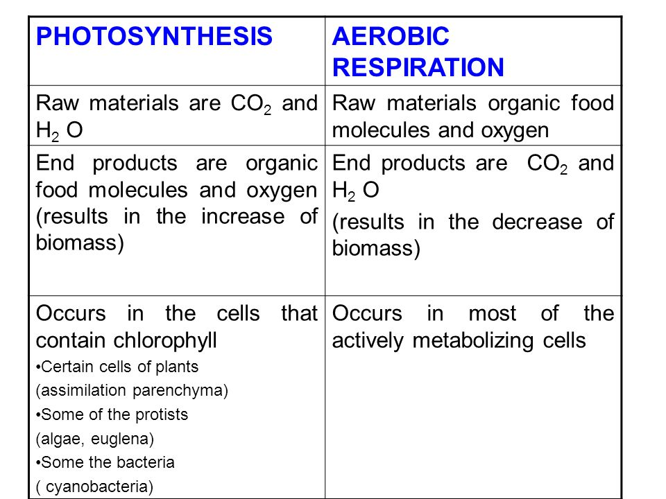 PHOTOSYNTHESIS AEROBIC RESPIRATION Raw materials are CO2 and H2 O